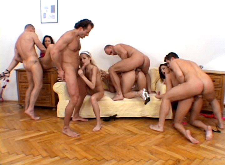Cream Pie Orgy 0II