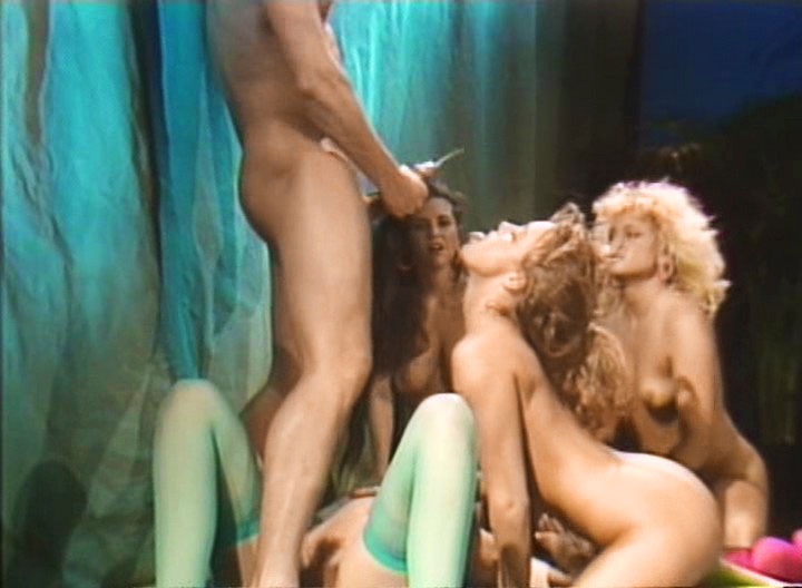 Bridgette Monroe, Michelle Monroe, Heather Lere, Nina Alexander dvd porn video from Peter North DVD
