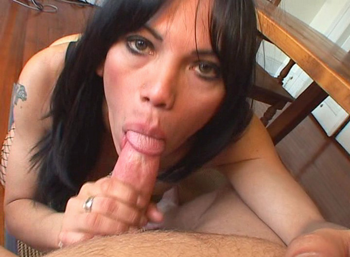 Tranny Sucks Cock & Gets White Cock In The Ass