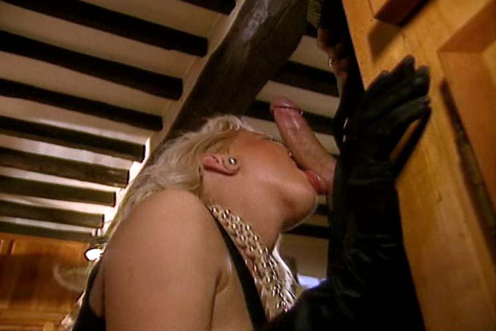 Silvia Saint gets some penis in the bar and the whore gets more !
