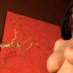 Tera Patrick Black Lingerie Striptease