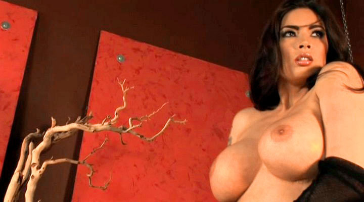 Tera Patrick feature in that strip montage in this video