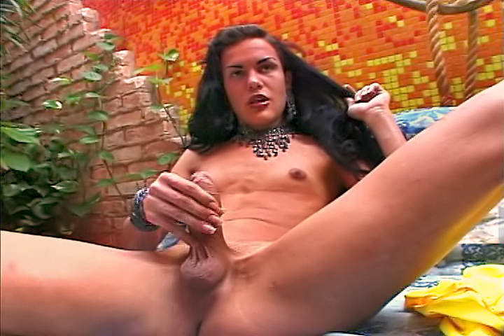 Evil Angel dvd porn video