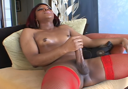 Black Transsexual With Huge Dick Jerking Off