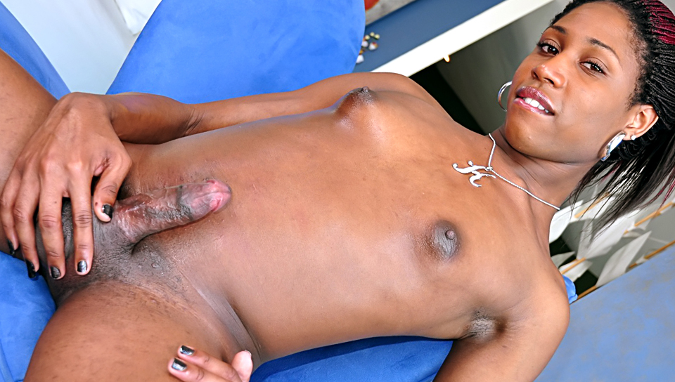 Beautiful sexy shemale enjoys a nice handjob by herself !